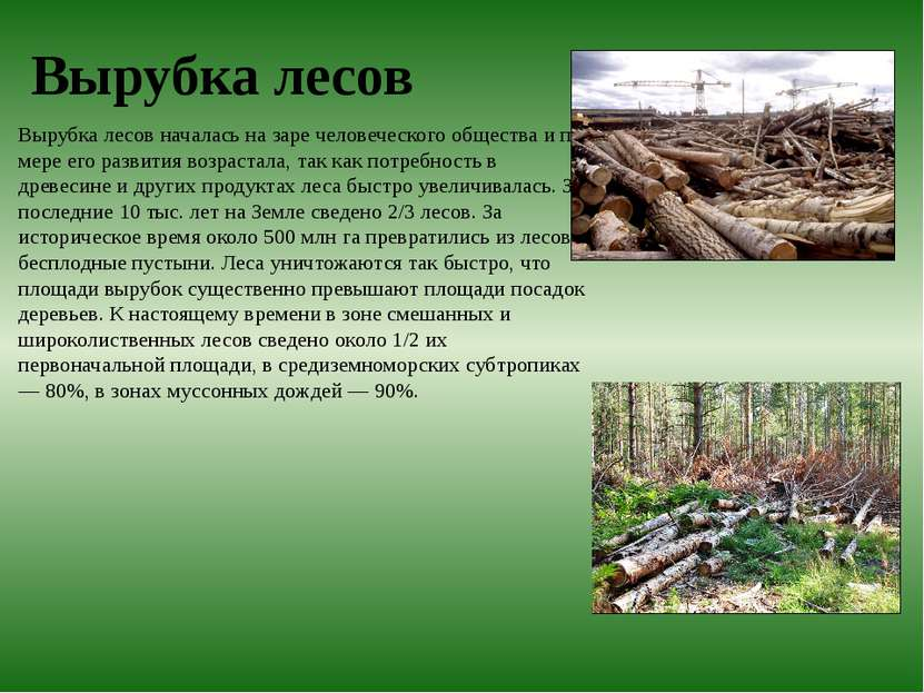 Вырубка лесов Вырубка лесов началась на заре человеческого общества и по мере...