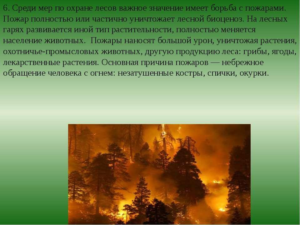 6. Среди мер по охране лесов важное значение имеет борьба с пожарами. Пожар п...