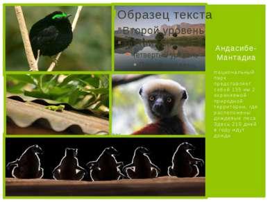 Национальный парк представляет собой 155 км 2 охраняемой природной территории...