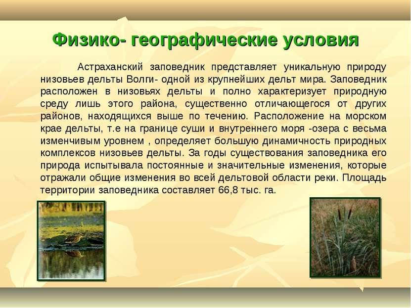 Физико- географические условия Астраханский заповедник представляет уникальну...