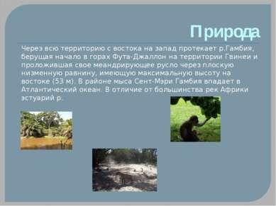 Природа Через всю территорию с востока на запад протекает р.Гамбия, берущая н...