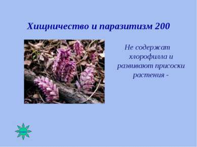 Хищничество и паразитизм 200 Не содержат хлорофилла и развивают присоски раст...