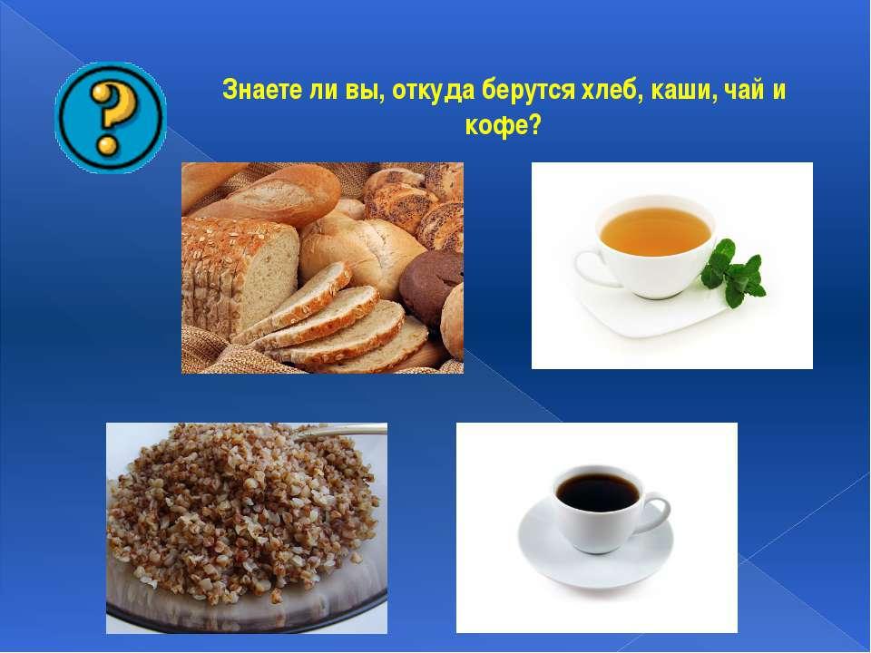 Знаете ли вы, откуда берутся хлеб, каши, чай и кофе?