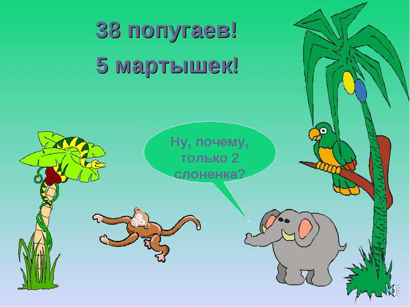 38 попугаев! Ну, почему, только 2 слоненка? 5 мартышек!
