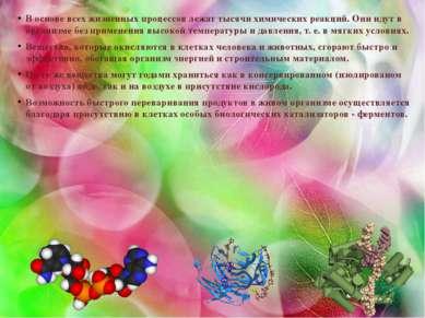 В основе всех жизненных процессов лежат тысячи химических реакций. Они идут в...
