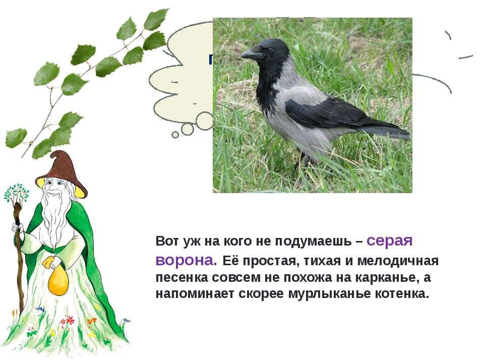 Какая птица своей песней предвещает скорый приход весны? Вот уж на кого не по...
