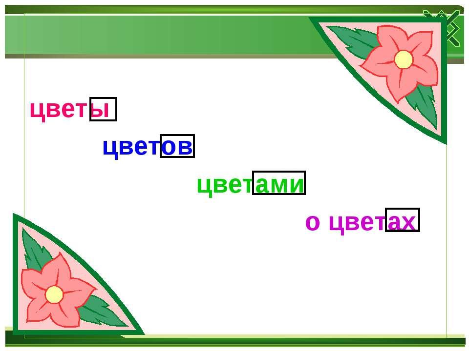 цветы цветов цветами о цветах
