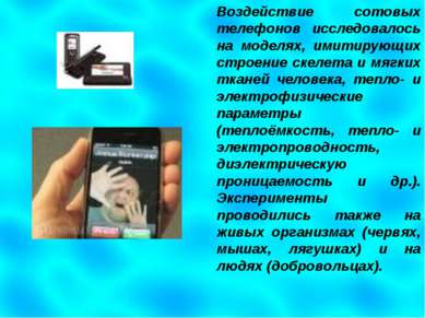 Воздействие сотовых телефонов исследовалось на моделях, имитирующих строение ...