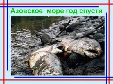 Азовское море год спустя