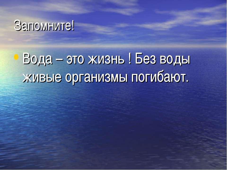 Запомните! Вода – это жизнь ! Без воды живые организмы погибают.