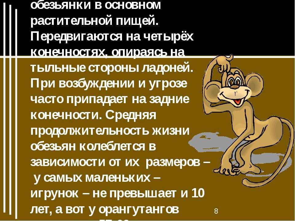 У обезьян много общих с человеком черт. Питаются обезьянки в основном растите...