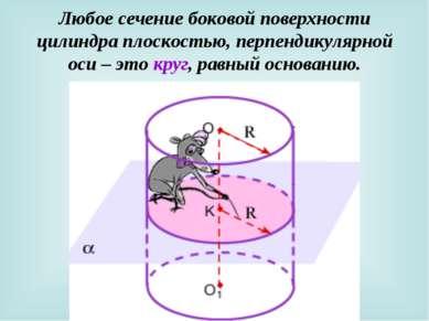 Любое сечение боковой поверхности цилиндра плоскостью, перпендикулярной оси –...