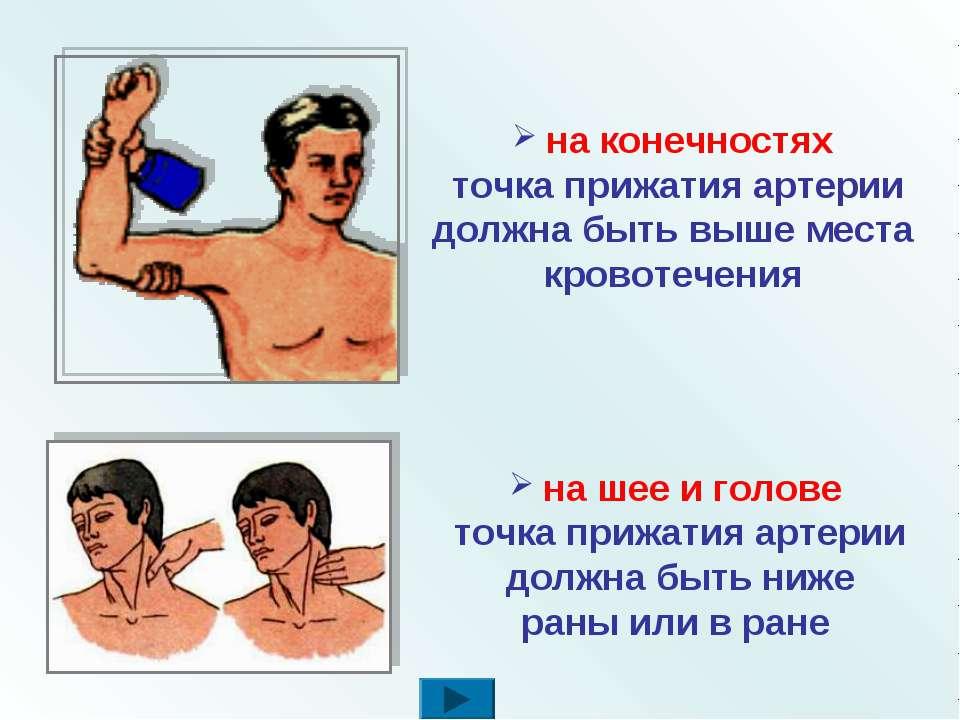 на шее и голове точка прижатия артерии должна быть ниже раны или в ране на ко...