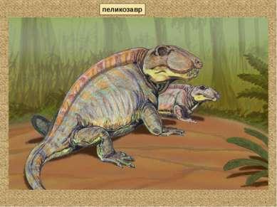 пеликозавр