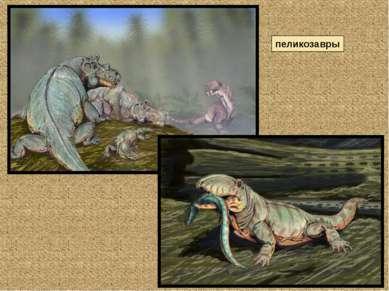пеликозавры