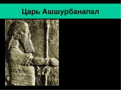 Царь Ашшурбанапал Ашшурбанапал- последний значительный царь Ассирии (669-630 ...