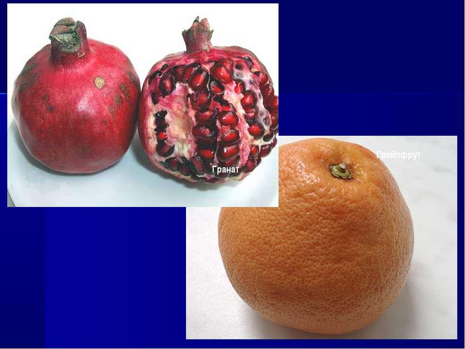 Гранат Грейпфрут