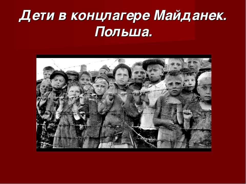 Дети в концлагере Майданек. Польша.