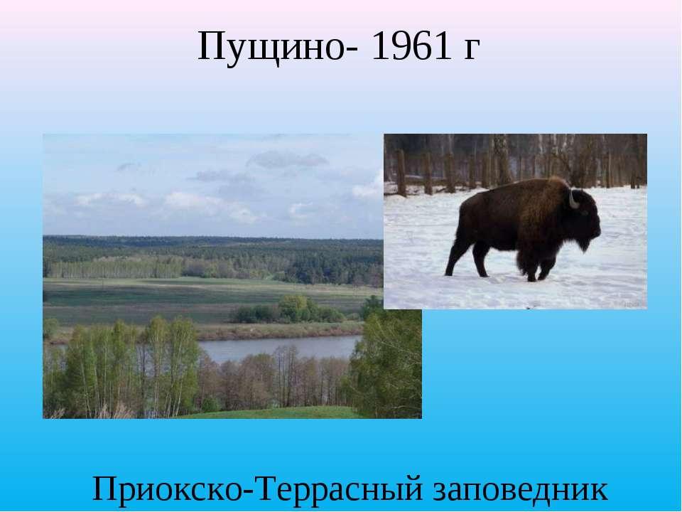 Приокско-Террасный заповедник Пущино- 1961 г