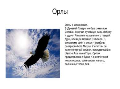 Орлы Орлы в мифологии. В Древней Греции он был символом Солнца, означал духов...