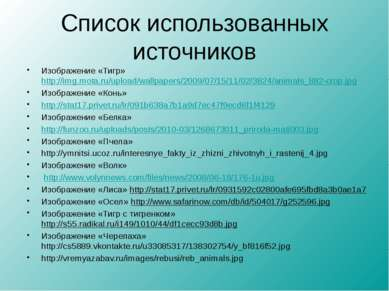 Список использованных источников Изображение «Тигр» http://img.mota.ru/upload...