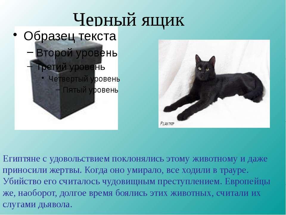 Черный ящик Египтяне с удовольствием поклонялись этому животному и даже прино...