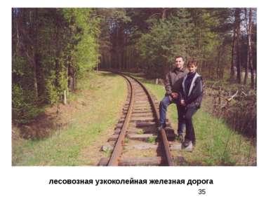 лесовозная узкоколейная железная дорога