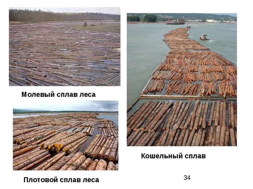 Молевый сплав леса Кошельный сплав Плотовой сплав леса
