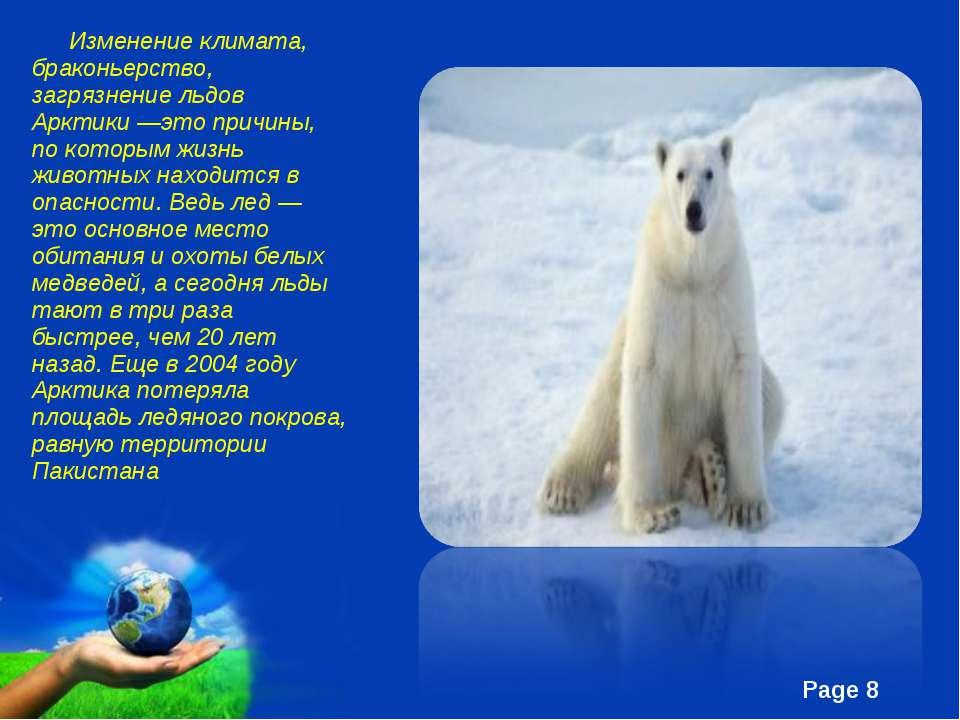 Изменение климата, браконьерство, загрязнение льдов Арктики —это причины, по ...