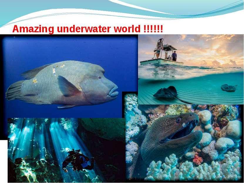 Amazing underwater world !!!!!!