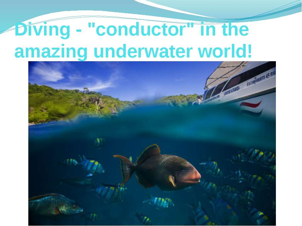 "Diving - ""conductor"" in the amazing underwater world!"