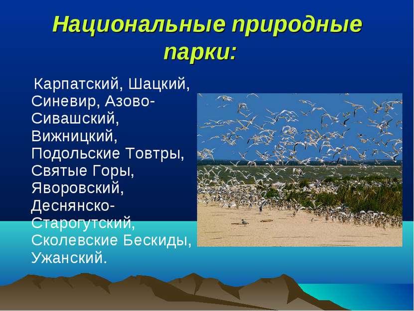 Национальные природные парки: Карпатский, Шацкий, Синевир, Азово-Сивашский, ...