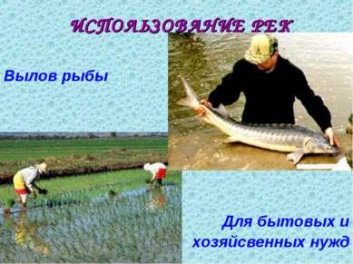 ИСПОЛЬЗОВАНИЕ РЕК Вылов рыбы Для бытовых и хозяйсвенных нужд