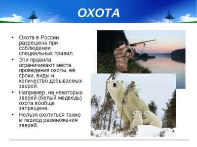 ОХОТА Охота в России разрешена при соблюдении специальных правил. Эти правила...