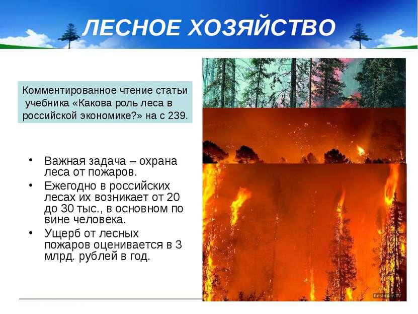 ЛЕСНОЕ ХОЗЯЙСТВО Важная задача – охрана леса от пожаров. Ежегодно в российски...