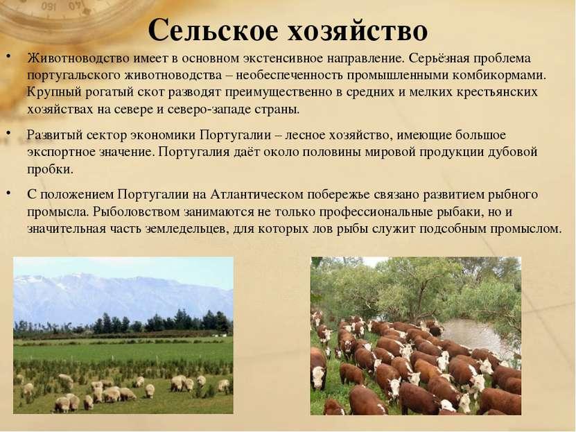 Сельское хозяйство Животноводство имеет в основном экстенсивное направление. ...