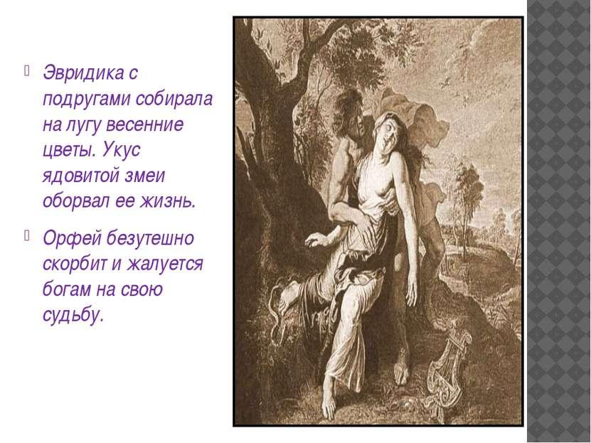 Эвридика с подругами собирала на лугу весенние цветы. Укус ядовитой змеи обор...