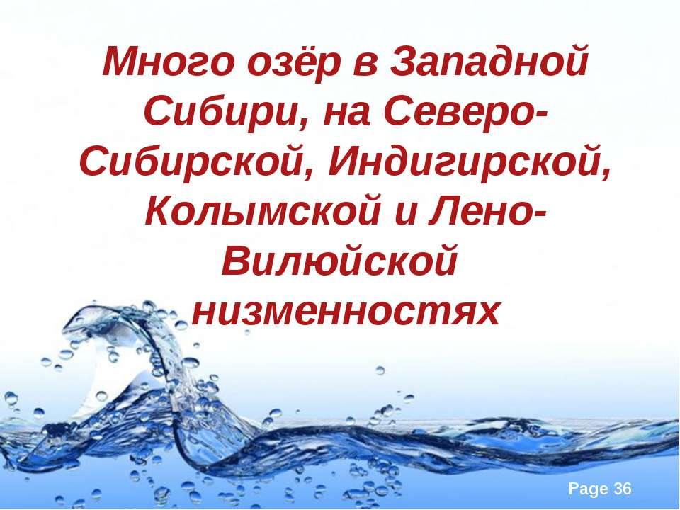 Много озёр в Западной Сибири, на Северо-Сибирской, Индигирской, Колымской и Л...