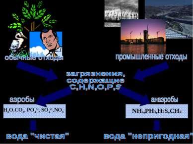 H2O,CO2, PO43-, SO42-,NO3- NH4,PH3,H2S,CH4
