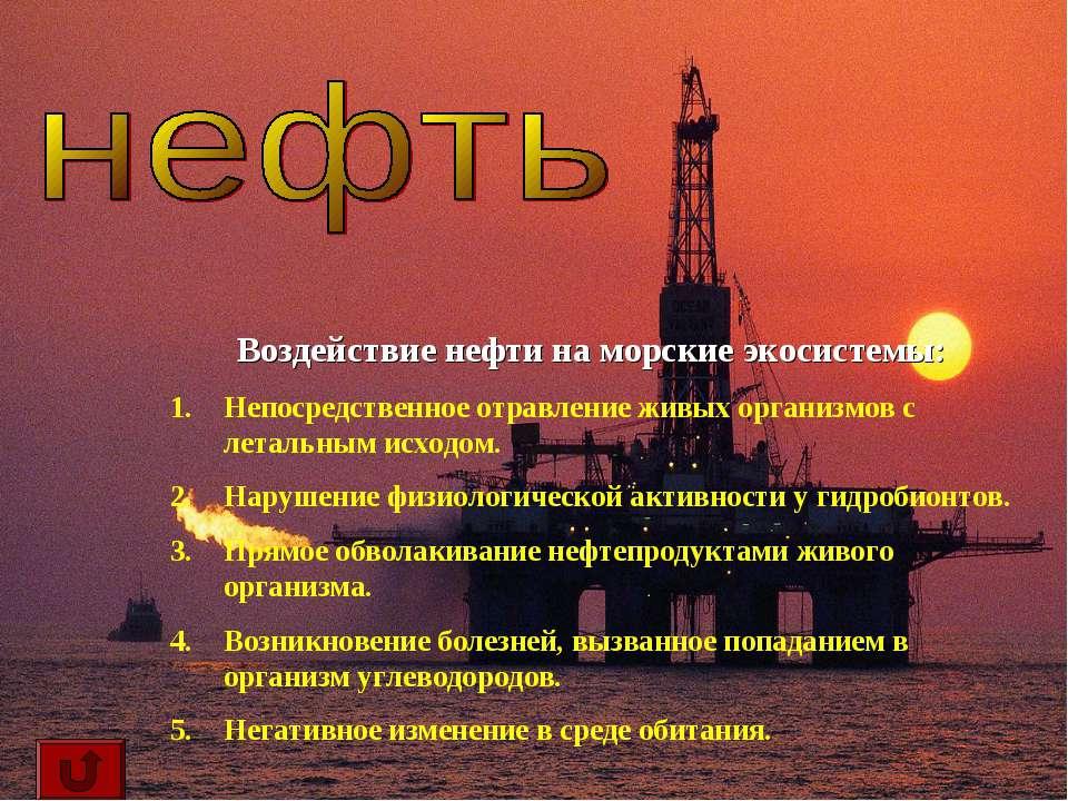 Воздействие нефти на морские экосистемы: Непосредственное отравление живых ор...