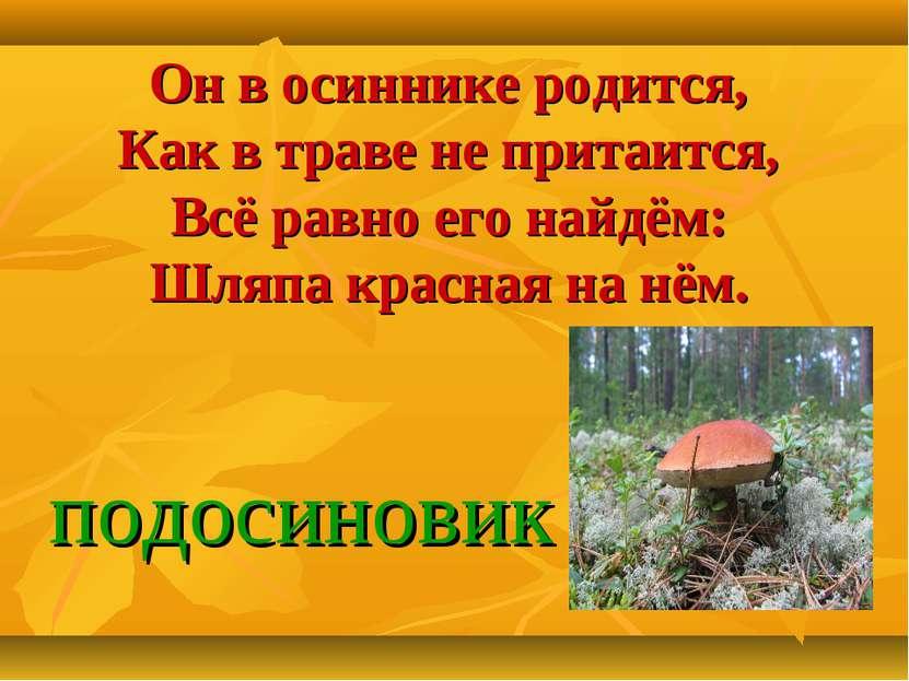 Он в осиннике родится, Как в траве не притаится, Всё равно его найдём: Шляпа ...