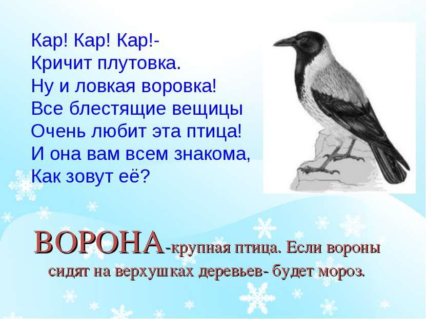 ВОРОНА-крупная птица. Если вороны сидят на верхушках деревьев- будет мороз. К...