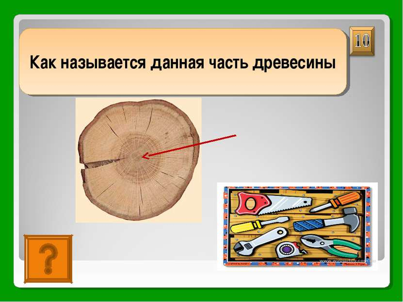 сердцевина Как называется данная часть древесины