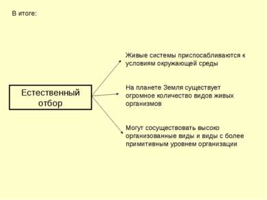 Естественный отбор В итоге: Живые системы приспосабливаются к условиям окружа...