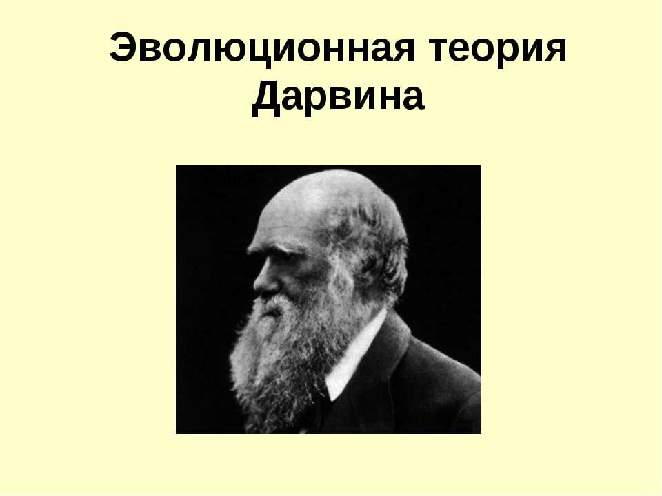 Эволюционная теория Дарвина