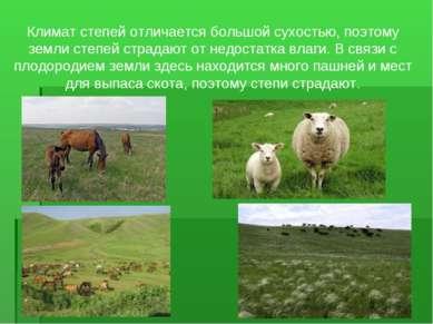 Климат степей отличается большой сухостью, поэтому земли степей страдают от н...