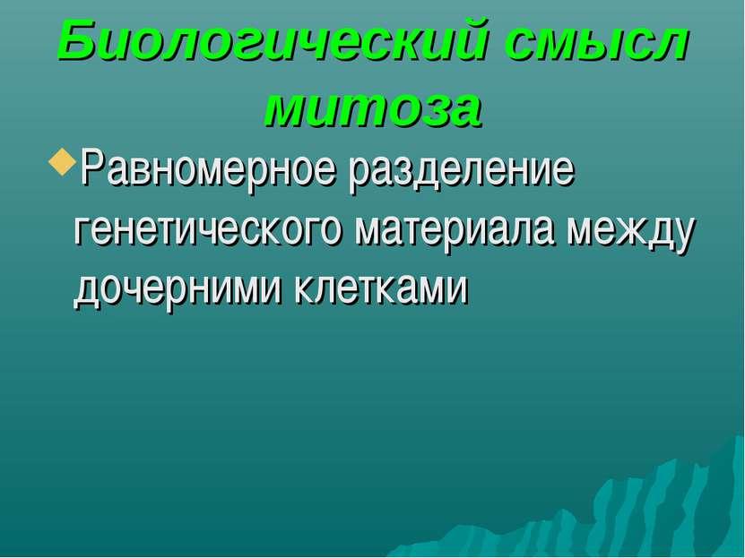 Биологический смысл митоза Равномерное разделение генетического материала меж...