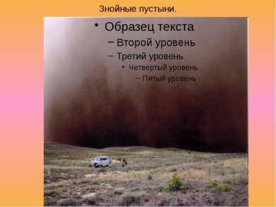 Знойные пустыни.