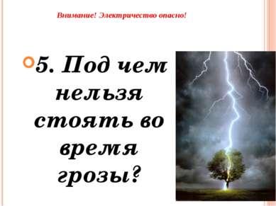 Внимание! Электричество опасно! 5. Под чем нельзя стоять во время грозы?