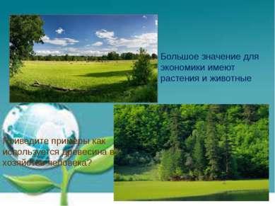 Большое значение для экономики имеют растения и животные Приведите примеры ка...